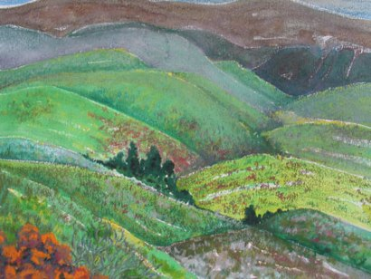 Felicity Potter overberg landscape, mixed media, felicity potter