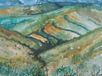Felicity Potter overberg landscape, felicity potter watercolour