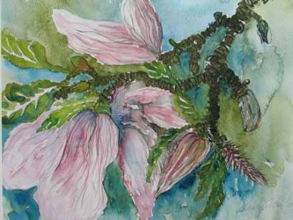 Felicity Potter magnolia, watercolour, felicity potter