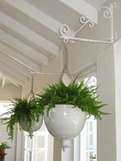 052 gallery, hanging planters with ferns