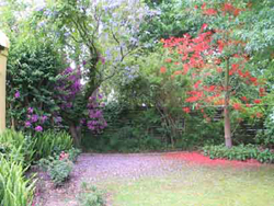 House and Garden corner-of-the-front-garden